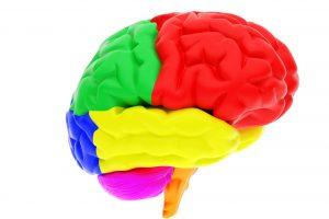 Brug sanserne, skab varige effekter